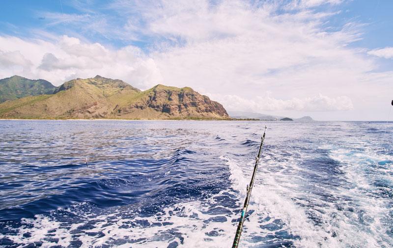 Fisherwomen of Waiʻanae